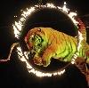Цирки в Саратове